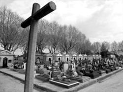 Cemitério de Vila das Aves está esgotado