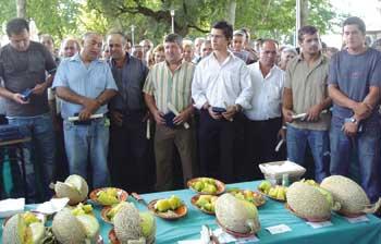 Concurso do Melão
