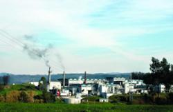 CCDR Norte desconhece laboração da Savinor ao fim-de-semana