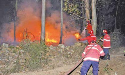 Fogos consomem área florestal