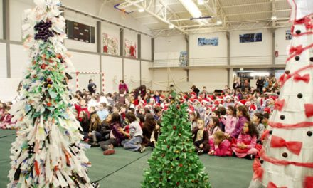 Savinor incentiva a construir árvores de Natal ecológicas