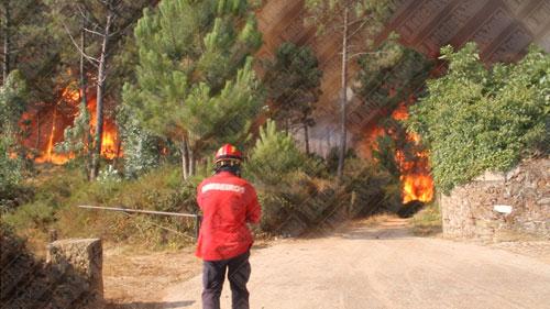 Bombeiro da Trofa ferido em incêndio