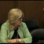 Joana Lima foi porta-voz do PS na aprovação da lei que proíbe plástico no comércio de pão, fruta e legumes