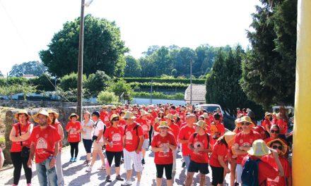 Centenas caminharam para ajudar o Samuel (c/video)