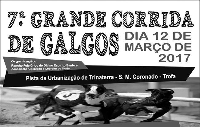 S. Mamede do Coronado recebe corrida de galgos no domingo