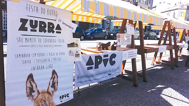 APVC faz balanço do Dia das Boas Ações