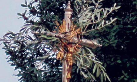 Este domingo é dia de Ramos
