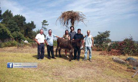 ZURRA – Festa do Burro  decorre no domingo