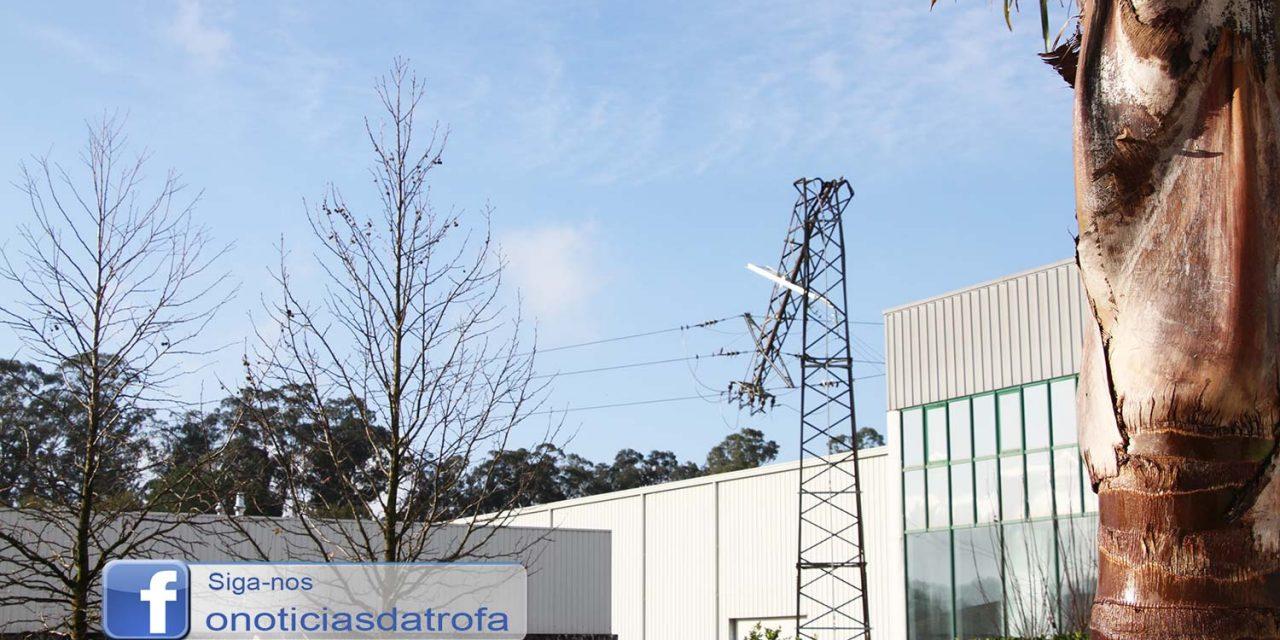 Queda de árvore provoca estragos em postes de média tensão
