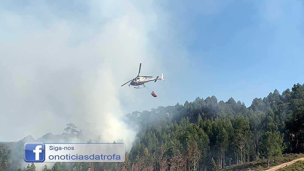 Incêndio consome área florestal em Paradela