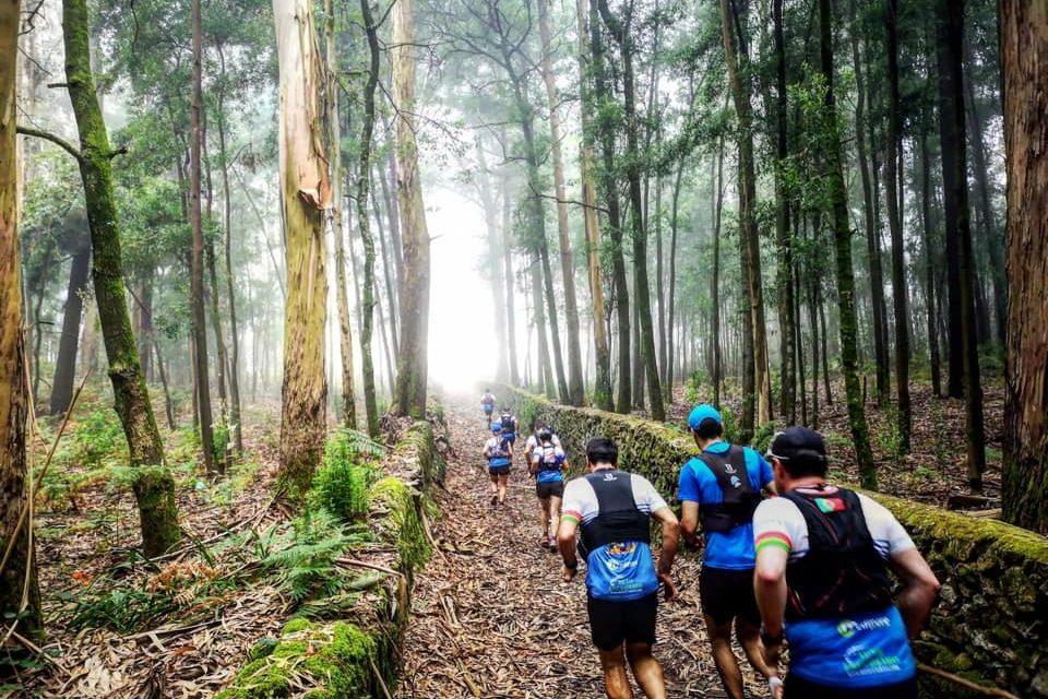 Trail da Trofa não se realiza este domingo